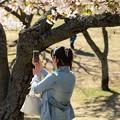 Photos: 春の元で自撮りしましょ