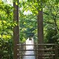 吊橋の向こう側