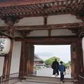 Photos: 東寺の朝は…