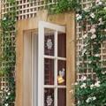 Photos: The door