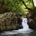 Photos: 渓流の中にひっそり