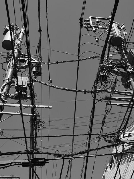Photos: 繋いでつないで繋いで繋ぐ