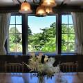 Photos: 初夏の窓辺