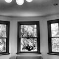 Photos: 夏の窓辺
