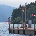 Photos: 涼を求めて芦ノ湖湖畔