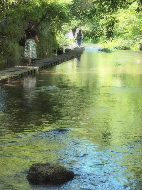 過ぎ行く夏の水辺を歩む
