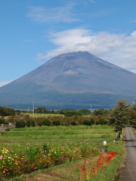 Photos: 御山の麓は秋爛漫♪