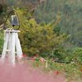 Photos: 秋バラ咲く鐘の有る情景