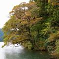 台風一過の芦ノ湖・湖畔