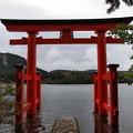 Photos: 芦ノ湖を見守る鳥居