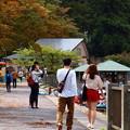 Photos: 芦ノ湖湖畔は、異邦人に溢れ…