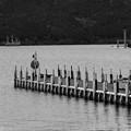 芦ノ湖は波高低し…