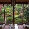 窓辺の外の庭園