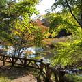 秋色に染まり始めた湖畔