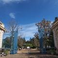 バカテル公園の青い空