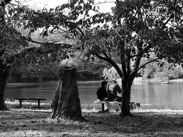 湖畔の秋色を愛しむ