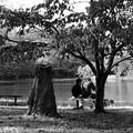 Photos: 湖畔の秋色を愛しむ