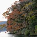 Photos: 湖畔の秋色