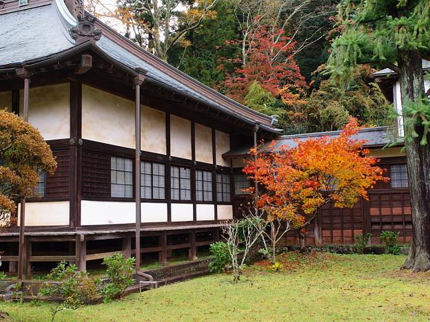山寺の境内は秋色