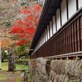 Photos: 山寺の秋色