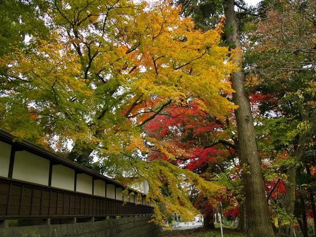 山寺も秋色に覆われし