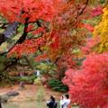 Photos: ふたりで秋色を…