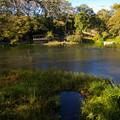Photos: 晩秋の朝の湧水