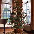 世界のクリスマス2019 in ベーリック・ホール -b