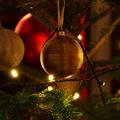 Photos: キラリ☆キラキラ☆☆クリスマスツリー