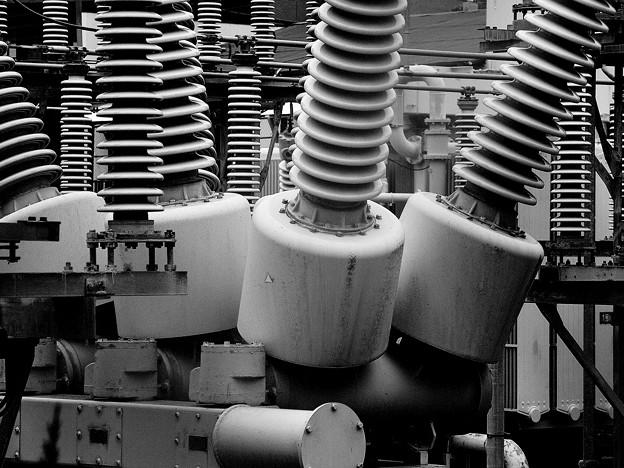 電柱の根本には…
