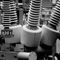 Photos: 電柱の根本には…