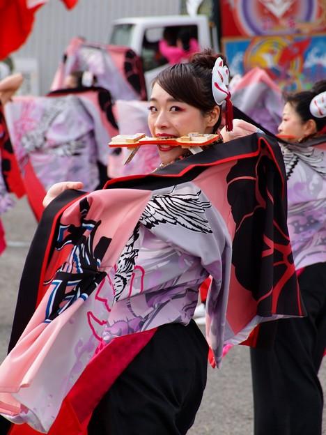よさこい東海道2019 -a