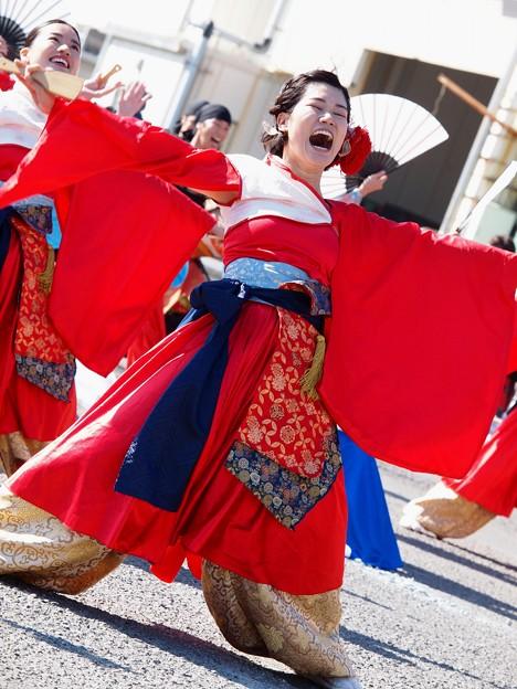 よさこい東海道2019~歓喜の叫び