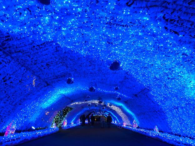 時之栖~光のトンネル