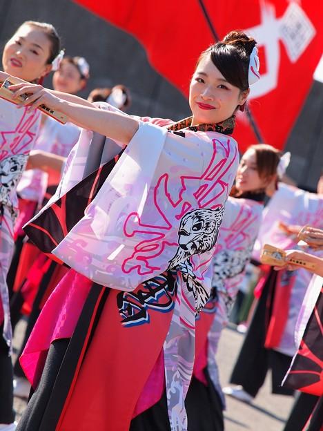 よさこい東海道2019~微笑