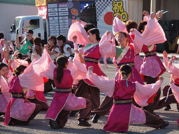 よさこい東海道2019~皆で舞うひととき