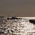 Photos: 夕暮れの海原の漁船
