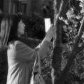 Photos: ワタシだけの桜花♪
