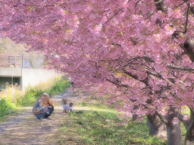 春の香りを写し込む type I