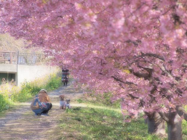 春の香りを写し込む type-II
