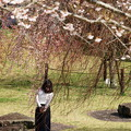 Photos: 春の香りを愛でる