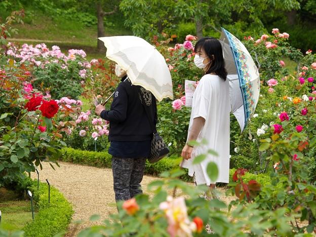 マスクと日傘と…