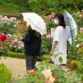 Photos: マスクと日傘と…