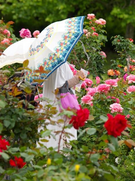 ガーデンとパラソルと