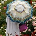 パラソルと春薔薇と