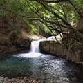 Photos: 人恋しい蛇滝
