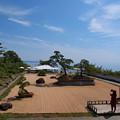 Photos: 東洋一の盆栽…
