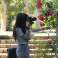 Photos: 薔薇の香りと共に…