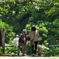 Photos: ばっちゃんと歩む…
