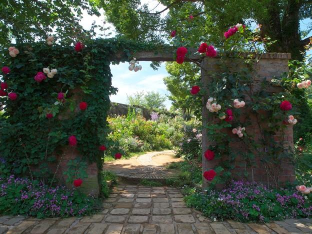 初夏の園へ誘う
